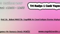 30 HAZİRAN 2017 SAAT : 10:00 – 10:55 ARASI TRT RADYO 1 CANLI YAYIN